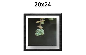 Enmarcado 20x24 + foto